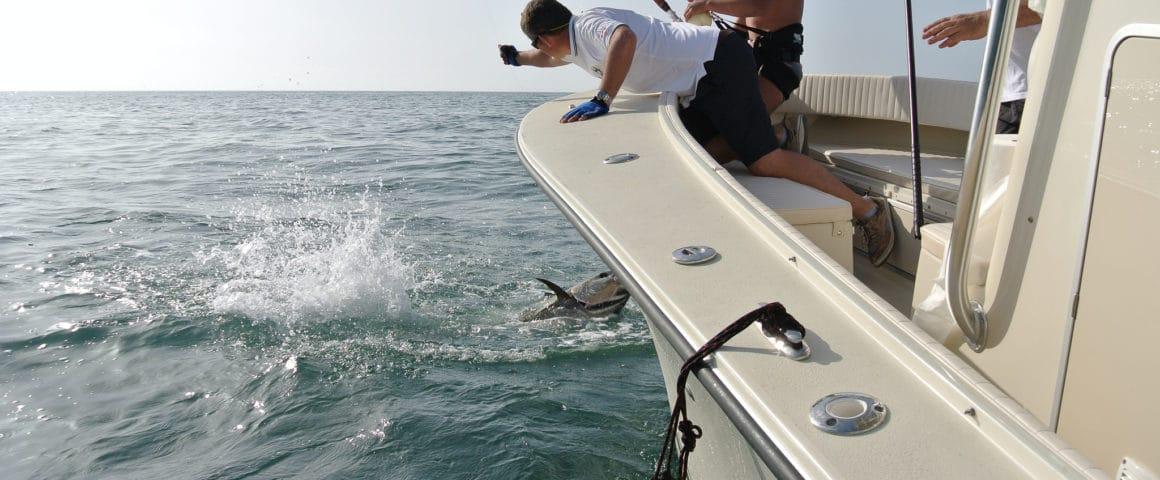 AL CUSTOM - AL 25 – Fishing Boat