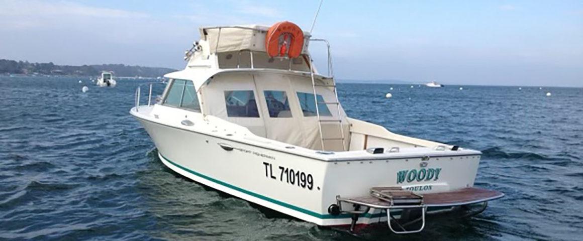 Autres bateaux - RIVA BERTRAM 25′ Sport Fisherman